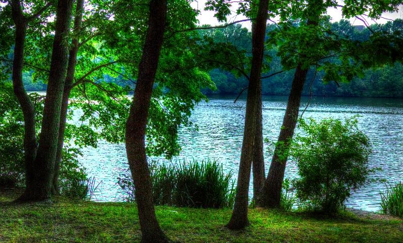 ompark_pond_0